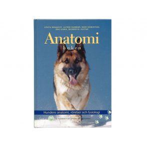 Anatomiboken